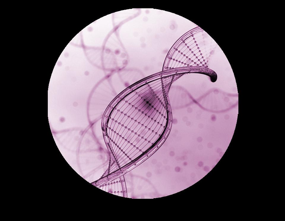 icono-genomica